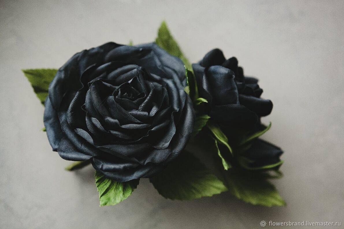 Что символизируют черные розы