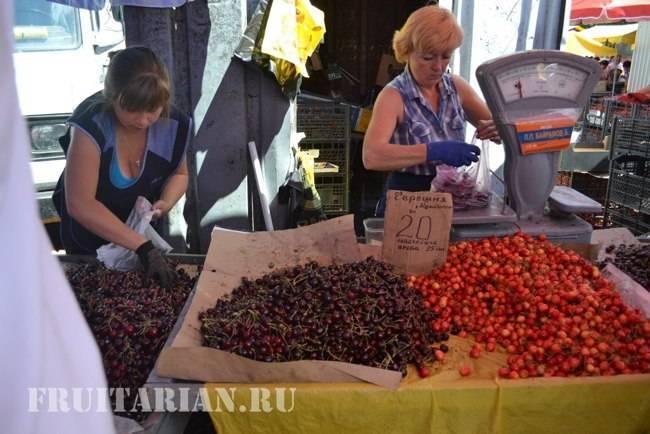 Если черешня, то самая крупная: 15 самых крупноплодных сортов, популярных в россии и мире