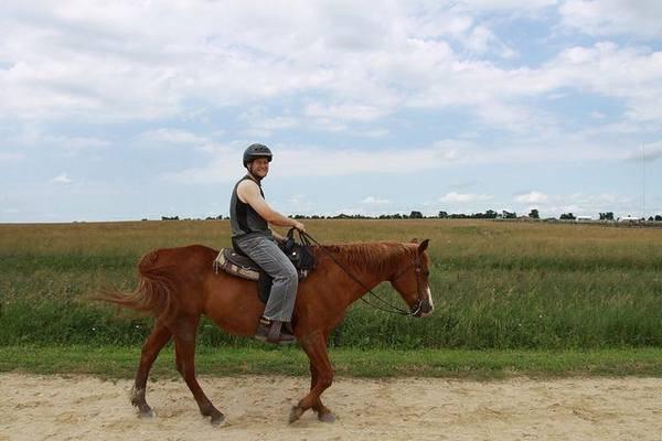 Как правильно управлять лошадьми
