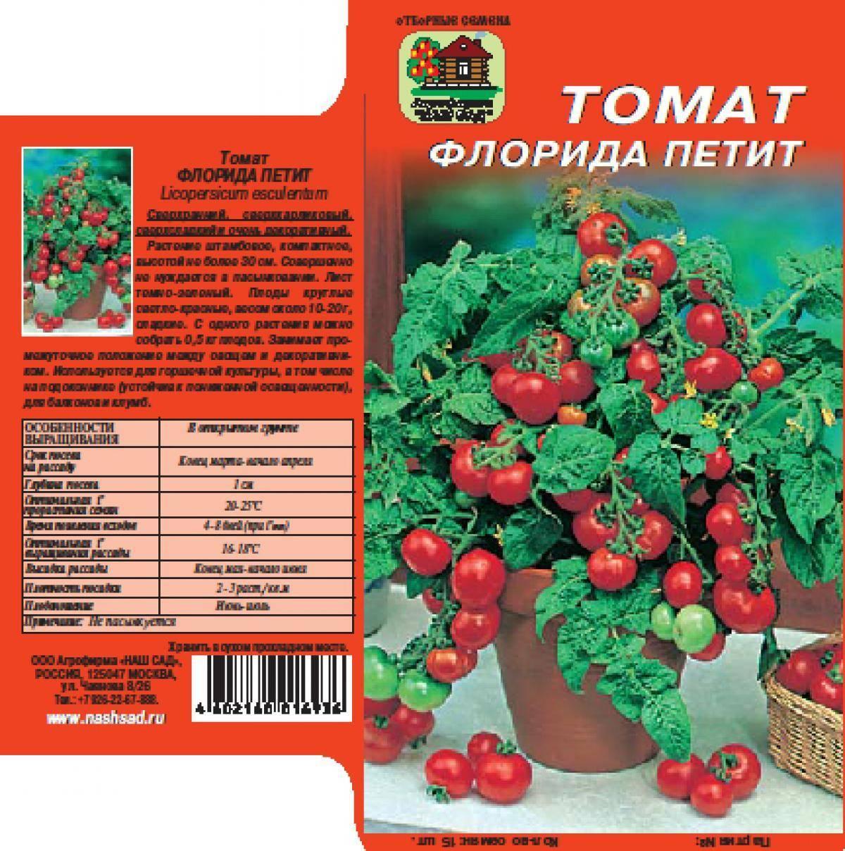 Томат клуша: описание сорта, отзывы, фото, характеристика | tomatland.ru