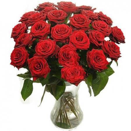 Как сделать так, что бы розы в вазе простояли долго? - как сохранить розы в вазе дольше отзывы - запись пользователя наталья (natsi83) в сообществе цветоводство в категории полезные советы - babyblog.ru
