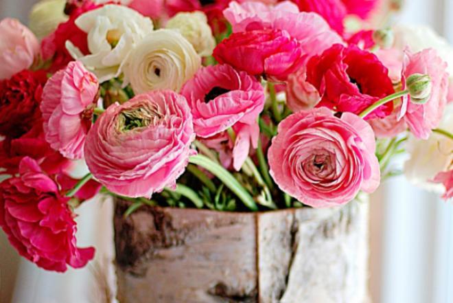 Пионовидные розы: сорта, посадка и уход