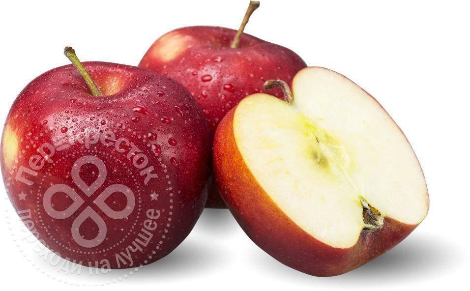 Яблоня «гала»: описание сорта, фото, отзывы