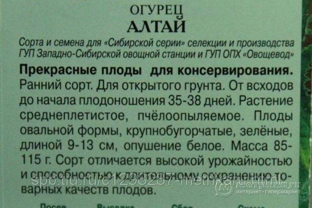 Сибирские сорта огурцов: обзор самых лучших