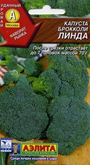 Лучшие сорта капусты для сибири