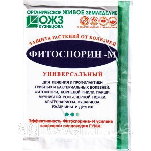 Фитоспорин для клубники — простая инструкция по применению и советы когда и как использовать препарат (100 фото + видео)