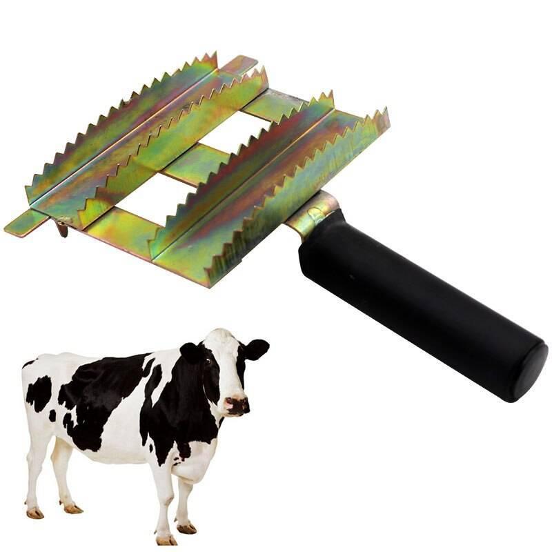 Способы убоя крупного рогатого скота в мире