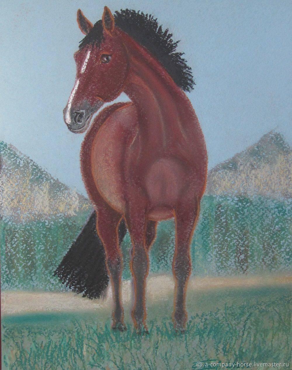 Все, что нужно знать о лошадях в яблоках