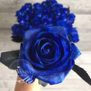 Синие розы: существуют ли в природе изначение подарка