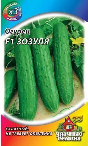 Характеристика и описание сорта огурцов зозуля f1 для выращивания в теплице