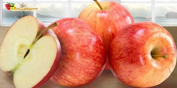 Яблоки сорта гала