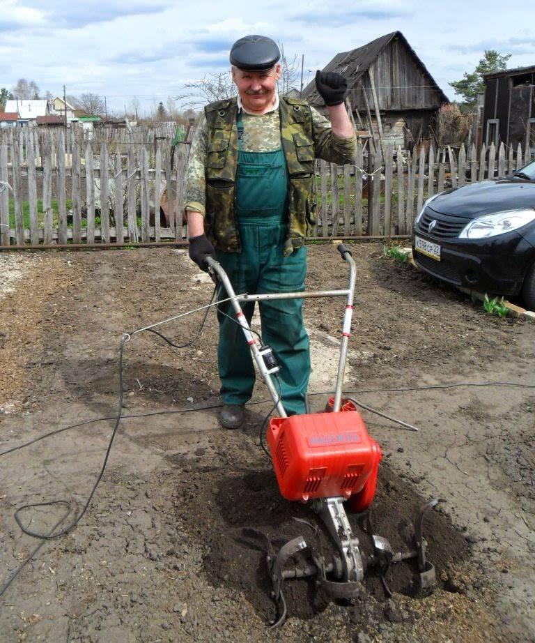 Как эффективно посадить на участке картофель без перекопки