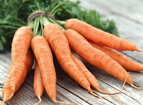 Как часто поливать морковь