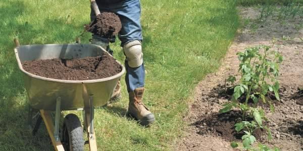 Удобрения кемира (фертика): виды, состав, применение