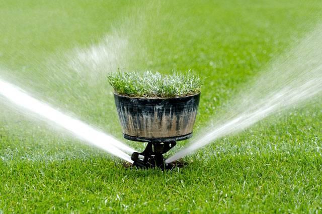 Готовые и самодельные устройства для полива огорода