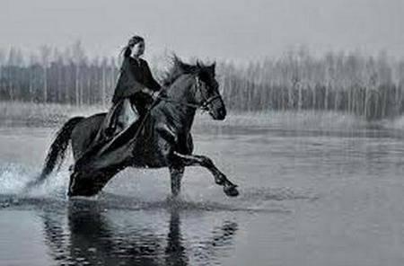 Психология: лошадь кататься на лошади - бесплатные статьи по психологии в доме солнца