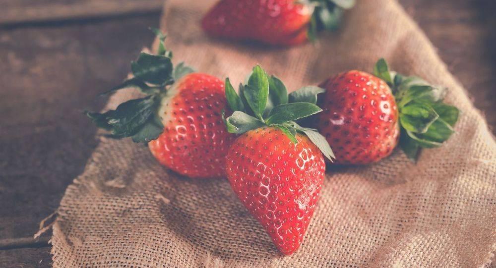 Как избавиться от вишнёвой мухи, вишнёвого долгоносика, так же их личинок в черешне и вишни, что делать с ягодами