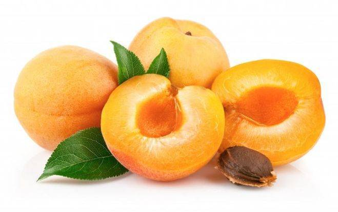 Особенности посадки и выращивания сорта абрикоса персиковый