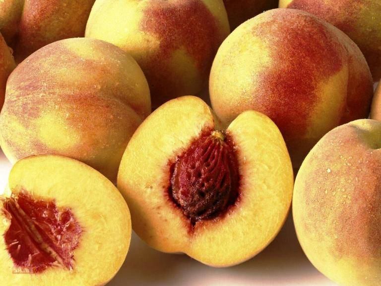 Персик из косточки: сорта, выращивание и уход