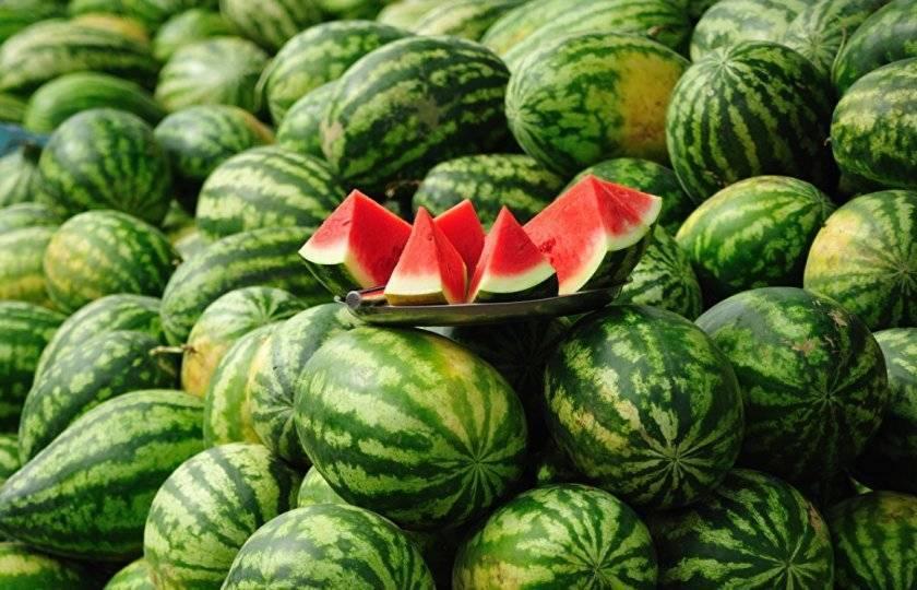 Как правильно называть плоды арбуза — фрукт, ягода, овощ или тыквина,