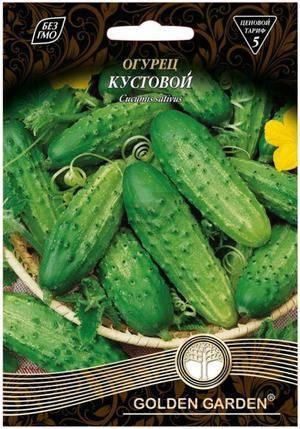 Кустовой огурец: 120 фото, характеристики и секреты выращивания кустовых сортов огурцов
