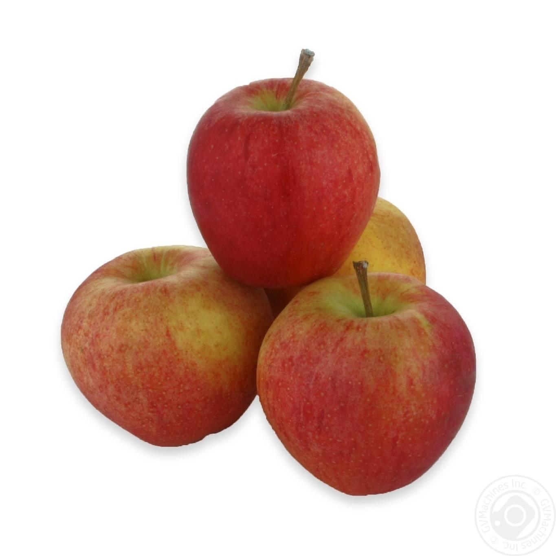Яблоки гала: описание сорта, плюсы и минусы