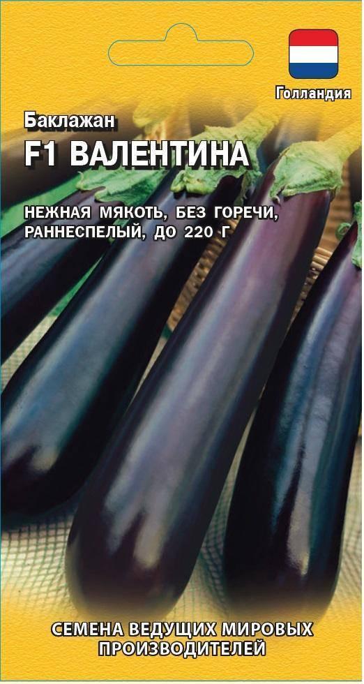 Лучшие сорта баклажан для открытого грунта и теплиц