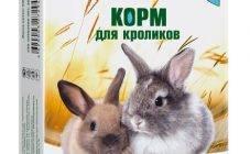 Откорм кроликов – чем кормить кролей для набора веса