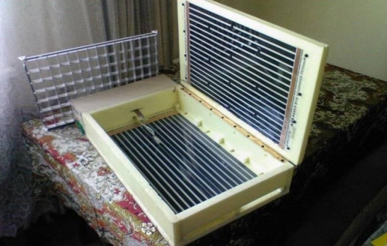 Как сделать инкубатор своими руками в домашних условиях
