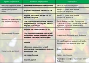 Жимолость весной: обработка от болезней и вредителей, обливание кипятком
