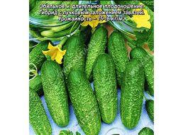 Огурец «конкурент»: описание сорта и нюансы выращивания