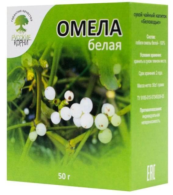 Омела белая: лечебные свойства и рецепт для похудения