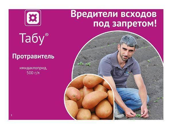 Препарат табу для обработки картофеля: преимущества, принцип действия, меры предосторожности, инструкция, фото, отзывы