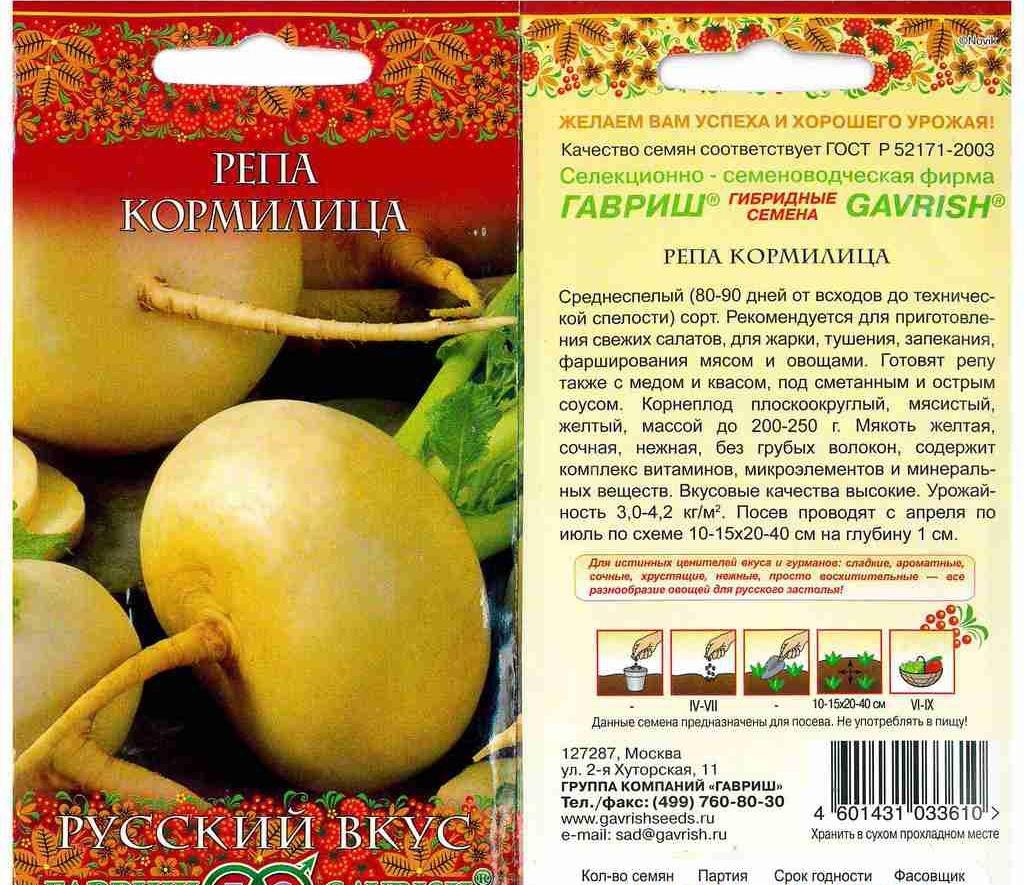 Репа: посадка и уход в открытом грунте. выращивание репы из семян - onwomen.ru
