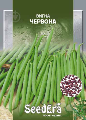 Овощная фасоль вигна: особенности выращивания