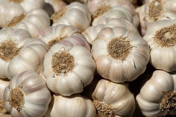 Какие опасности таит в себе китайский чеснок? свойства и описание импортного продукта