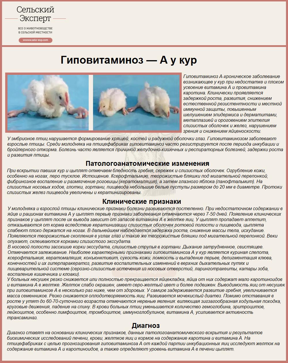 Тривит для цыплят бройлеров (инструкция)