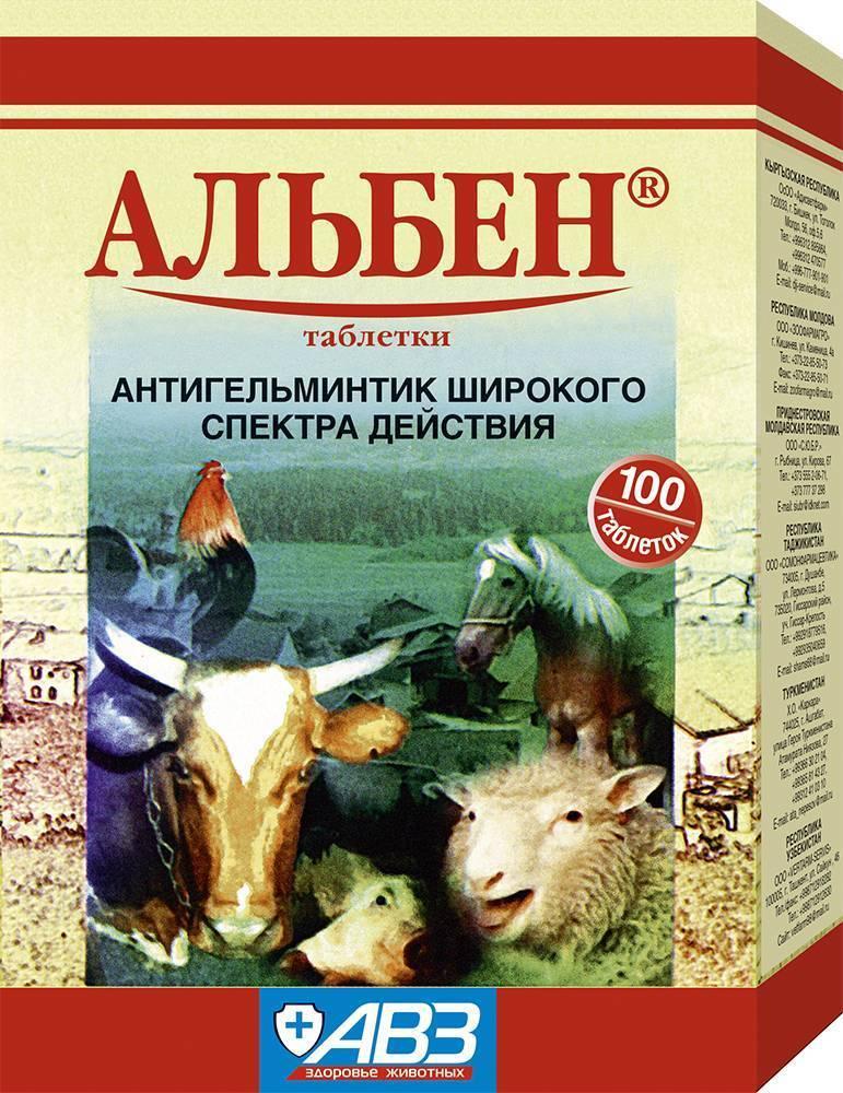 Альбен от глистов: эффективное лекарство для лечения животных