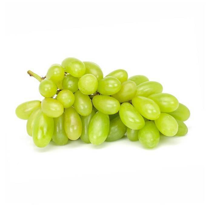 Описание сорта винограда «дамские пальчики»