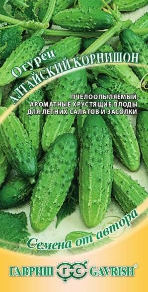 Лучшие сорта огурцов для сибири: с описанием, фото и подробными характеристиками
