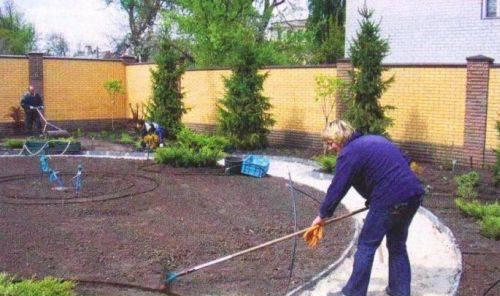 Как стелить рулонный газон своими руками: пошаговое руководство, полезные советы