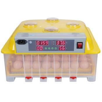 Инкубатор для яиц автоматический — особенности работы и советы при выборе