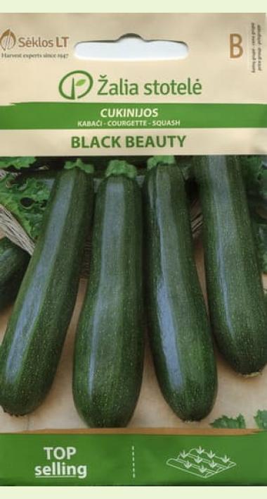 Черный красавец (кабачок-цуккини) — отзывы, описание и характеристика сорта