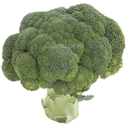 Капуста брокколи - выращивание из семян, инструкция и советы!