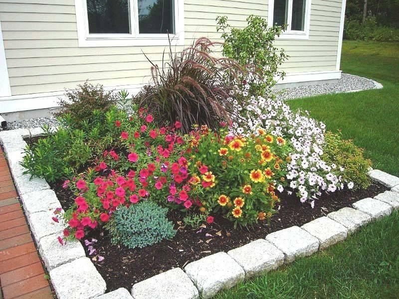 Клумба непрерывного цветения: как создать, выбор растений, фото | дом мечты