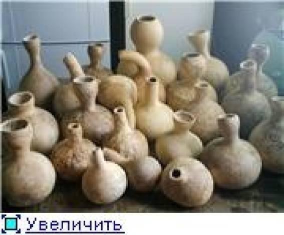 Все о выращивании декоративной тыквы из семян