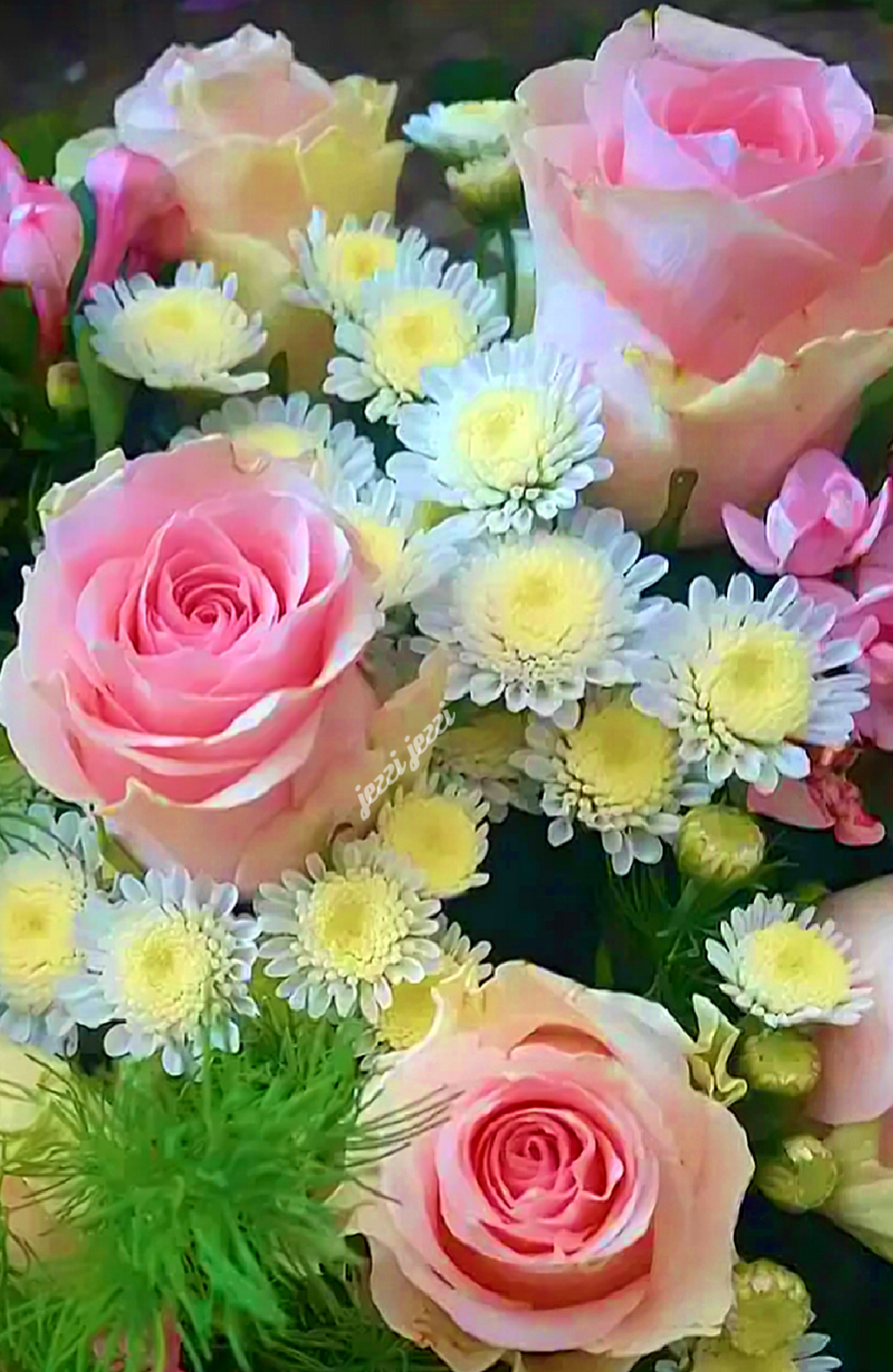 О самых красивых цветах: семена и черенки красивоцветущих многолетников