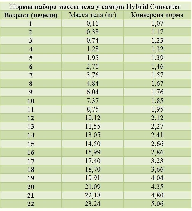 Сколько весят кролики разных пород и возрастов?