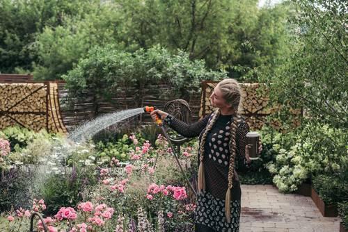 Как обрезать розы после цветения летом, чтобы они снова зацвели