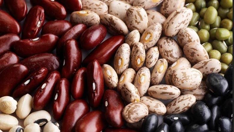 Нужно ли замачивать бобы перед посадкой? - животные и растения - вопросы и ответы